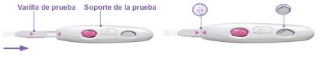 Preparación del test de ovulación